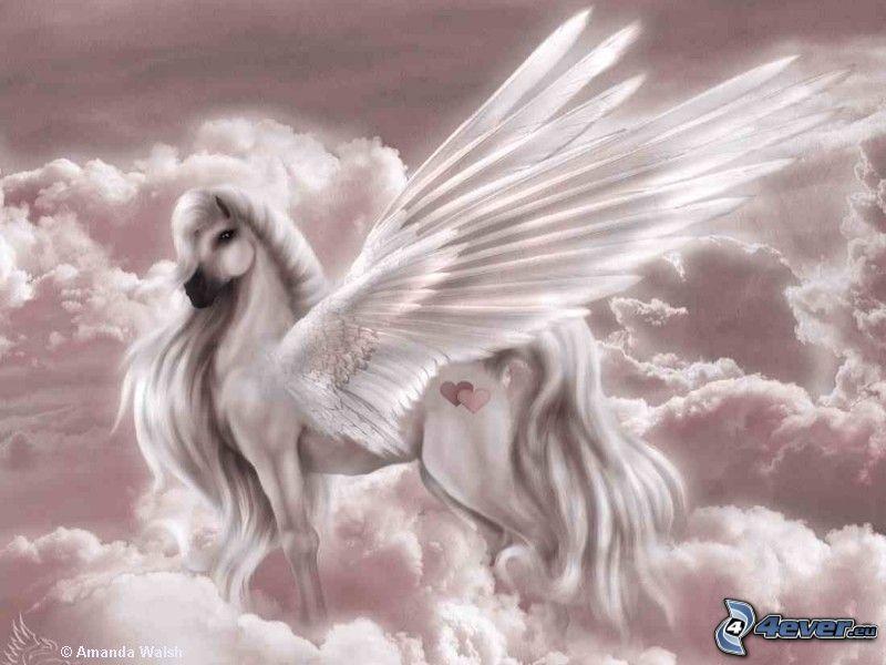 Pegasus, vit häst, himmel