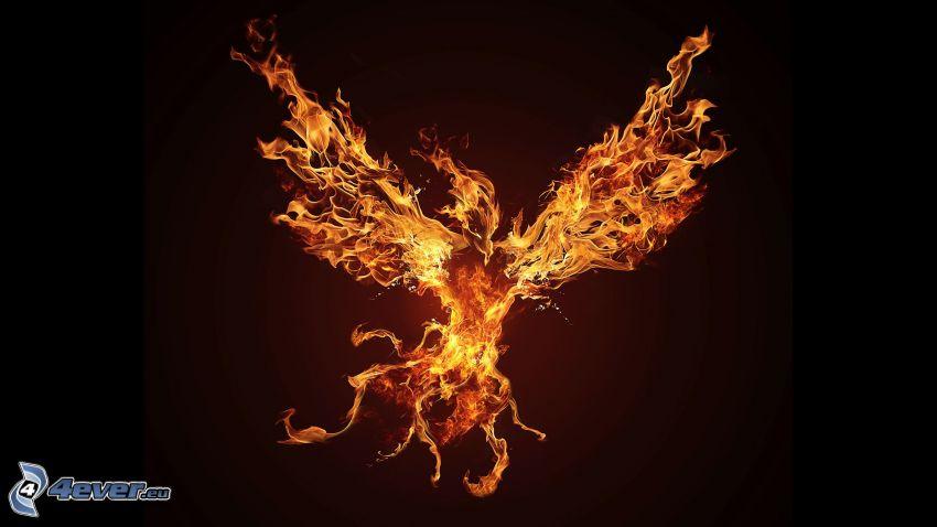 Phoenix, eldfågel