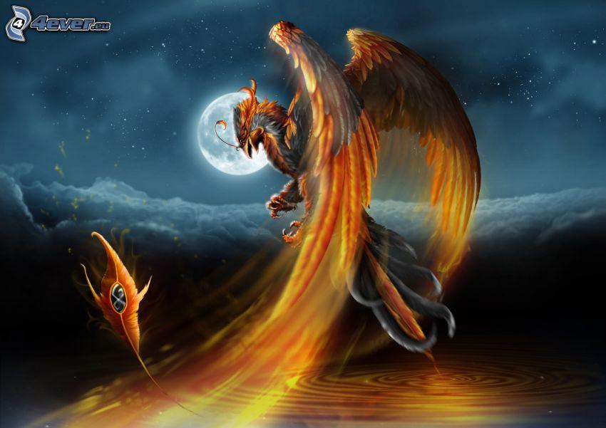 Phoenix, måne, vattenyta, droppande