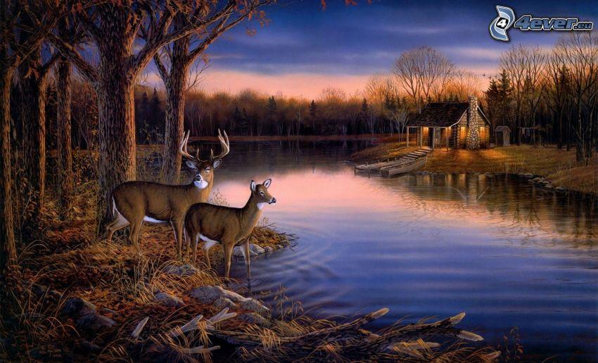 rådjur, sjö, hus, kväll, Thomas Kinkade