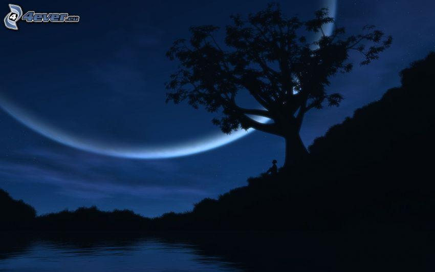 siluett av ett träd, måne, flod, silhuett av skog