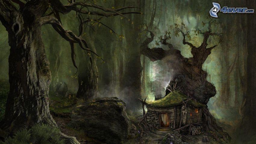 skog, hus