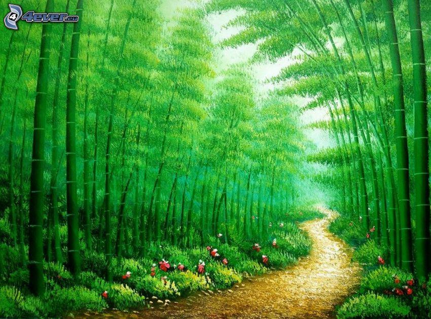 skogsväg, bambuskog