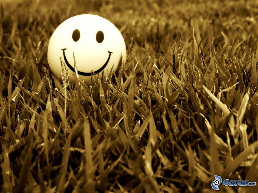 smiley, gräs