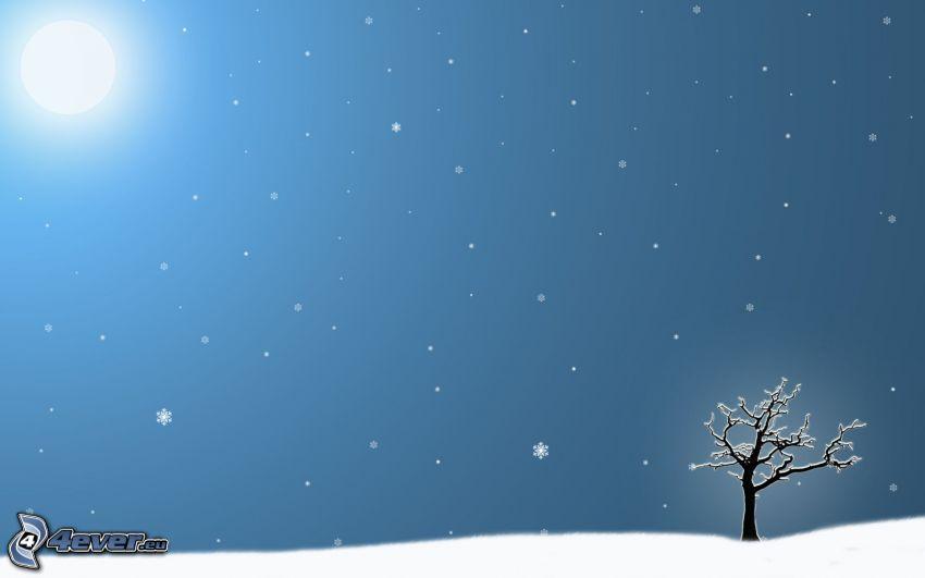 snöigt träd, sol