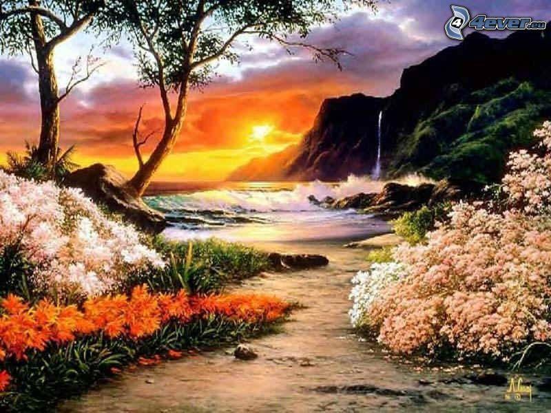 solnedgång över strand, kust, blommor, natur, sol, vattenfall