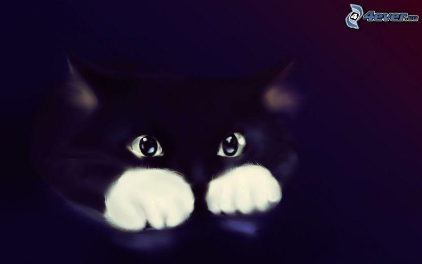 svart katt, kattunge
