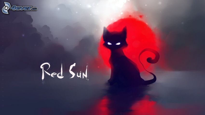 svart katt, moln