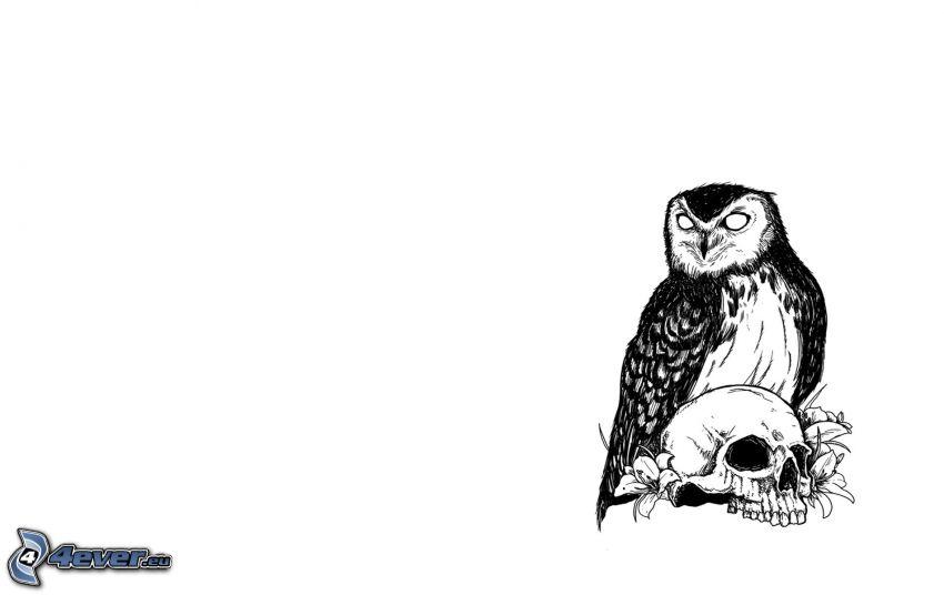 tecknad uggla, dödskalle