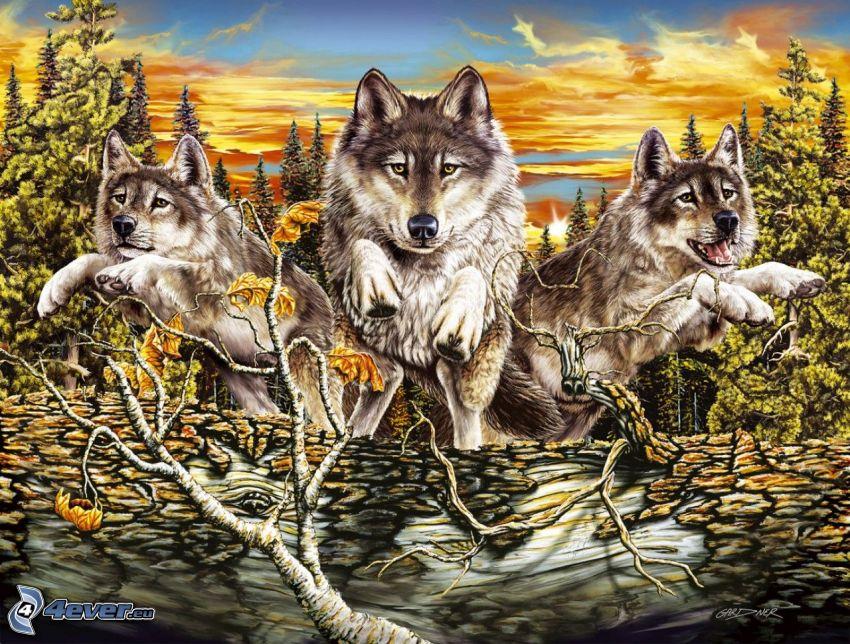 tecknade vargar, skog