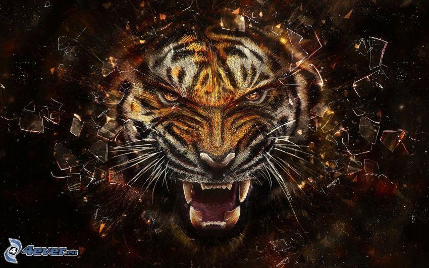 tiger, krossat glas