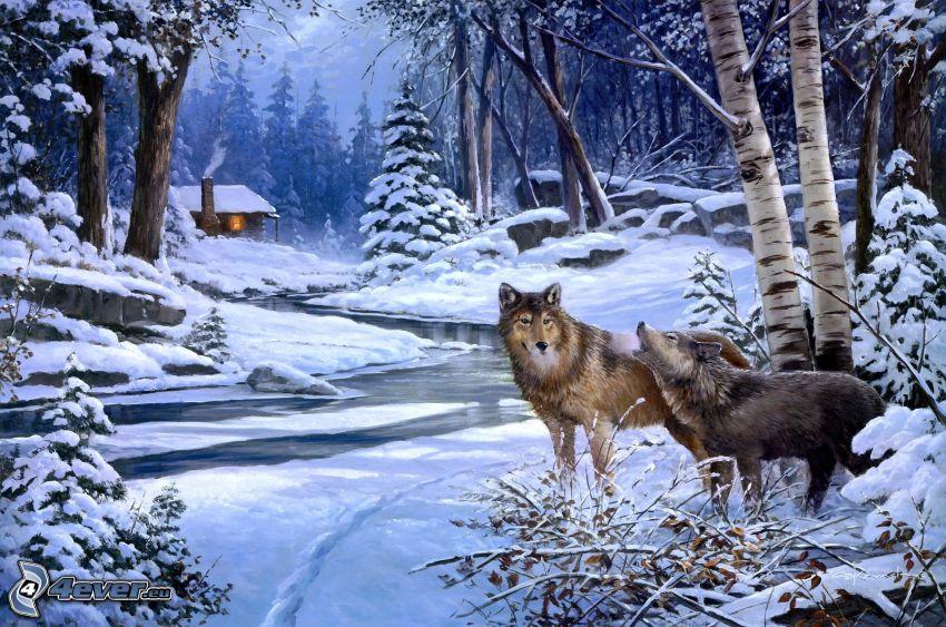 vargar, flod, snöig skog, hus
