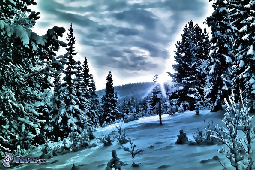 vinterlandskap, snöklädda träd, snö