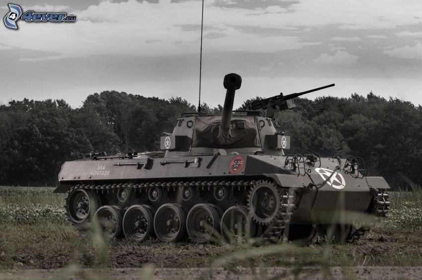 M18 Hellcat, tank, skog