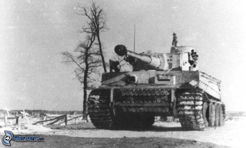 Tiger, tank, gammalt foto, Wehrmacht, Andra världskriget