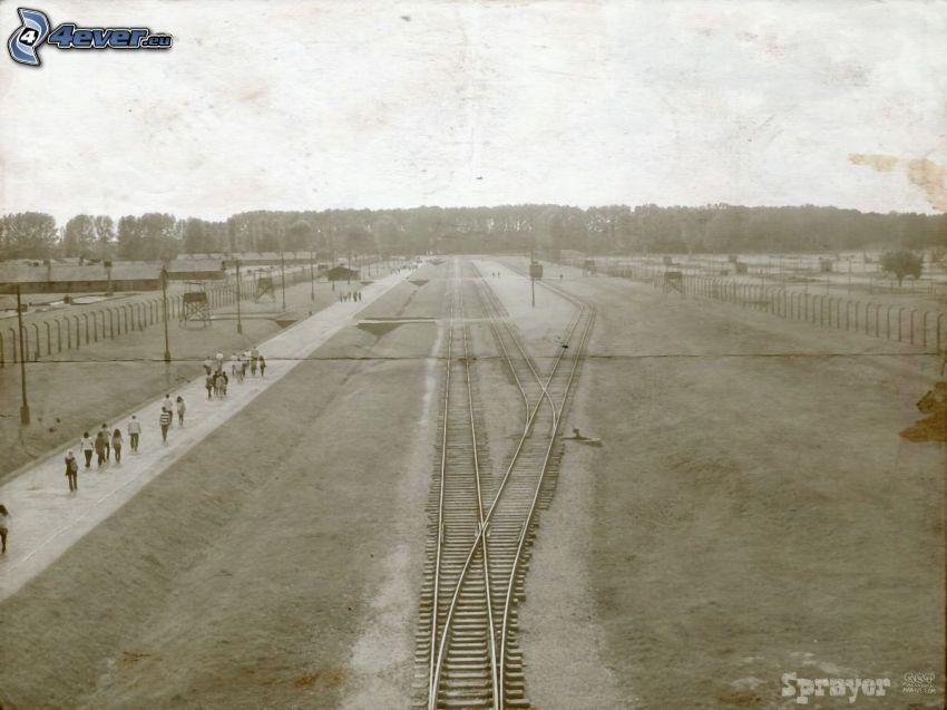 Auschwitz, koncentrationsläger, järnväg, gammalt foto