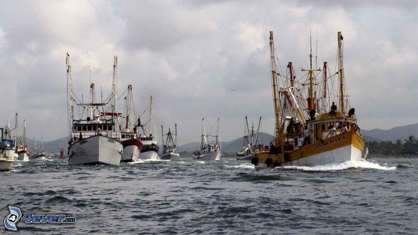 fartyg, hav