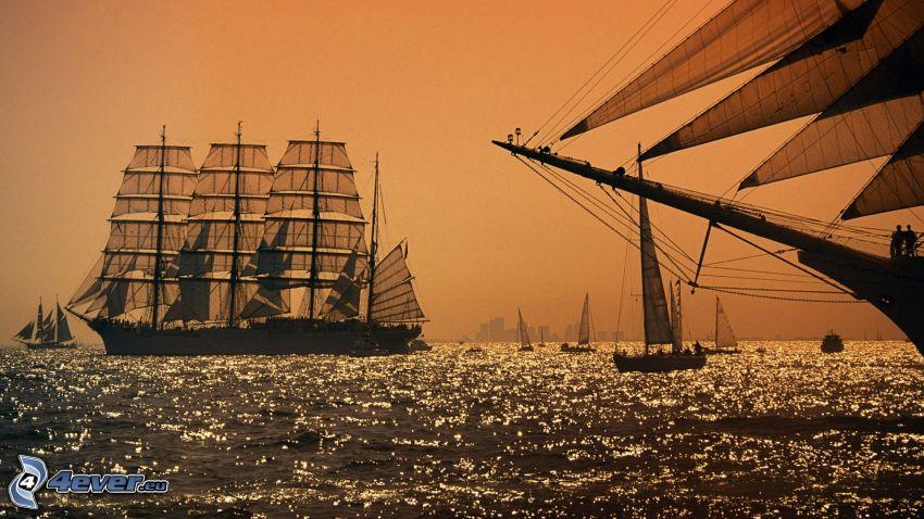 fartyg, segelbåtar, hav