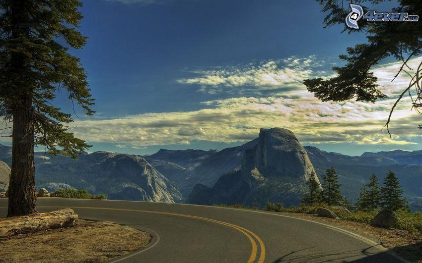 kurva, väg, Yosemite National Park, klippiga berg, träd