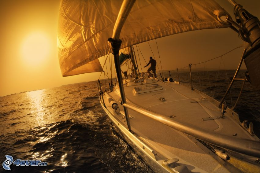 segelbåt, orange solnedgång över havet