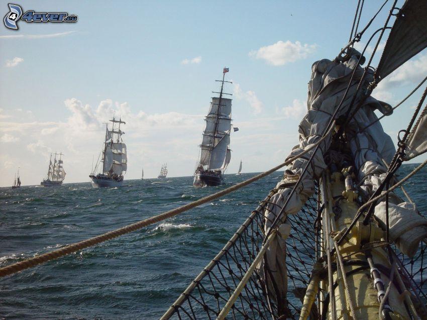 segelbåtar, hav