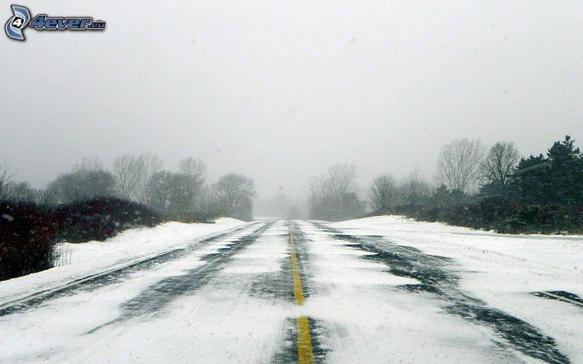 snöig väg, träd