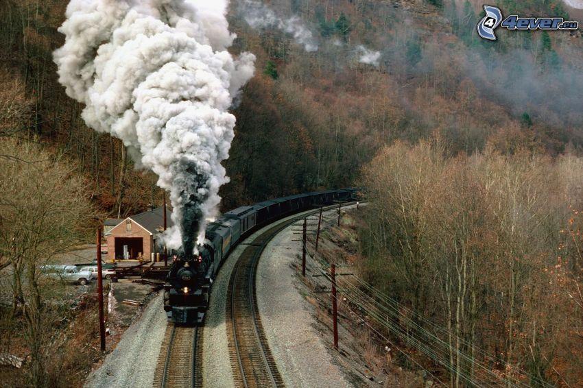 ånglok, järnväg, skog, rök