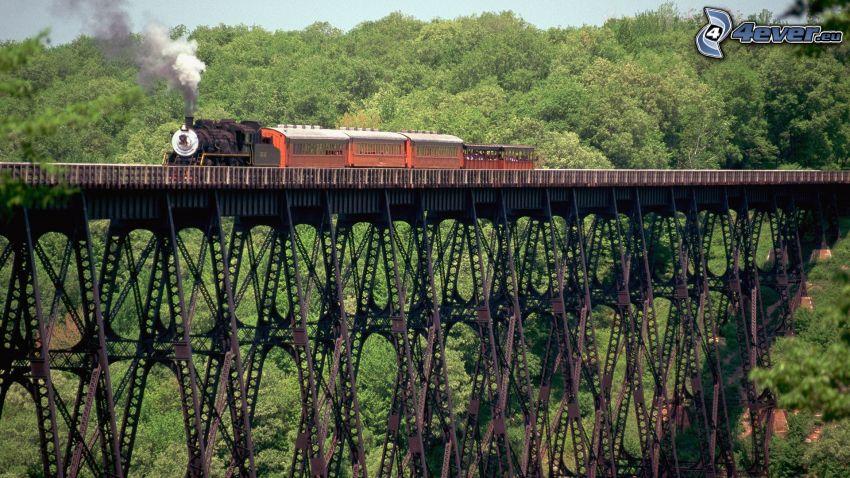 ånglok, järnvägsbro, skog
