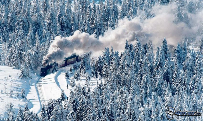 ånglok, snöig skog