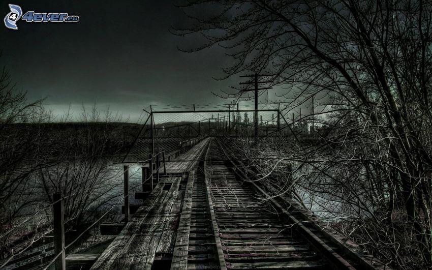 gammal bro, gammal järnväg, träd