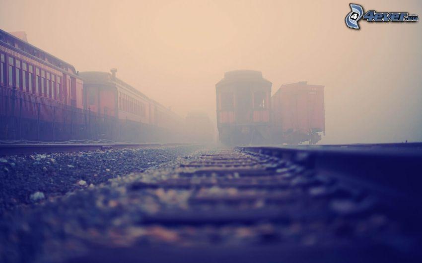 historiska godsvagnar, järnvägsstation, dimma