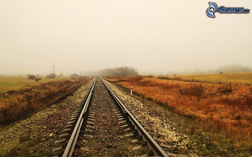 järnväg, åker