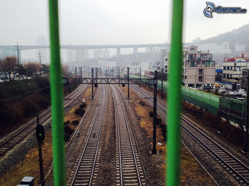 järnväg, bro