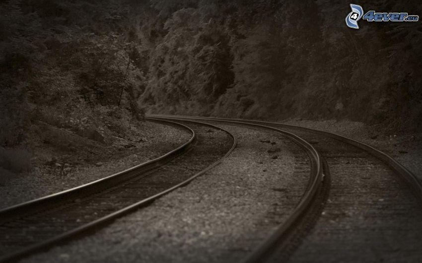 järnväg, kurva, svart och vitt
