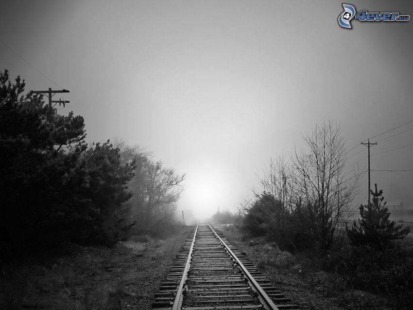 järnväg, svart och vitt