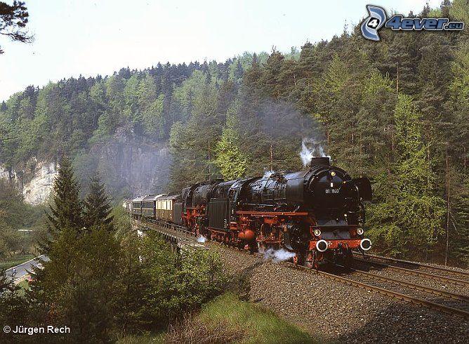 Orient Express, ånglok, skog