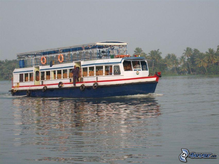 turistbåt, flod, palmer