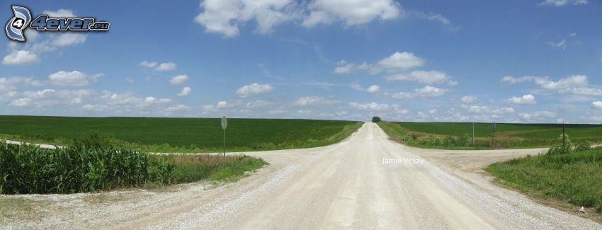 väg, korsning, fält