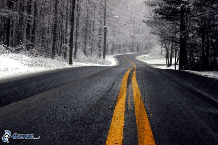 väg, kurva, snöig skog