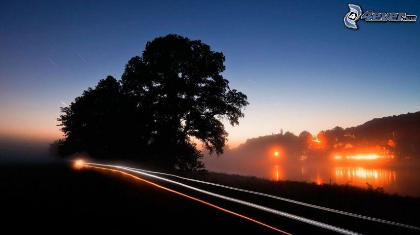 väg, ljus, kväll, siluetter av träd