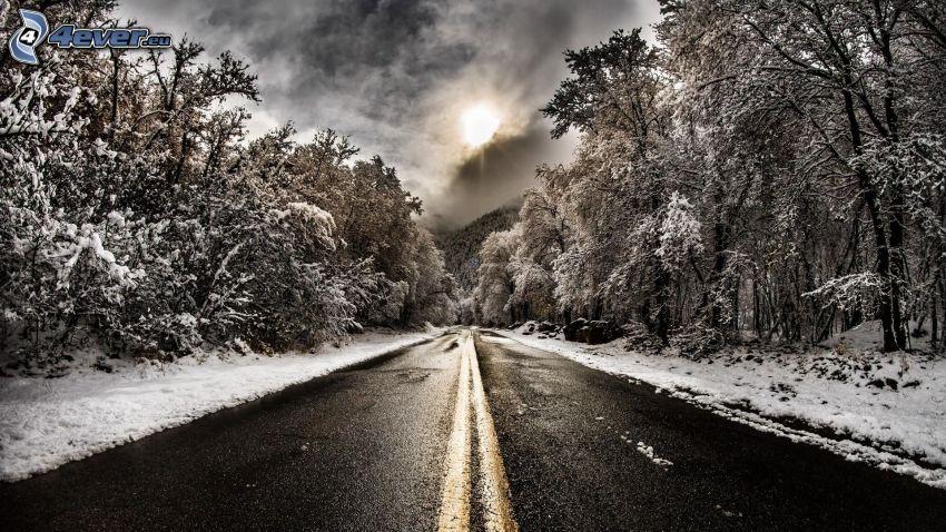 väg, snöig skog, sol bakom molnen