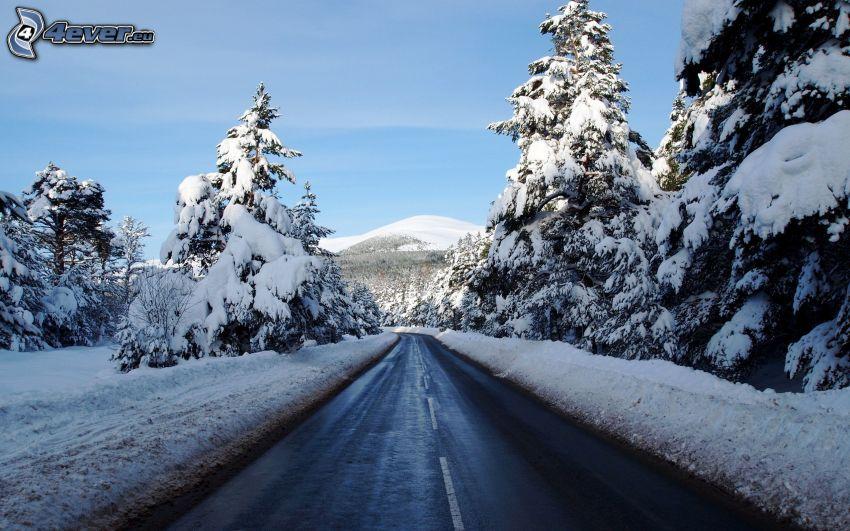 väg, snöigt landskap