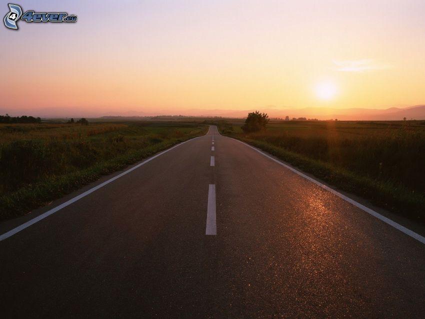 väg, solnedgång