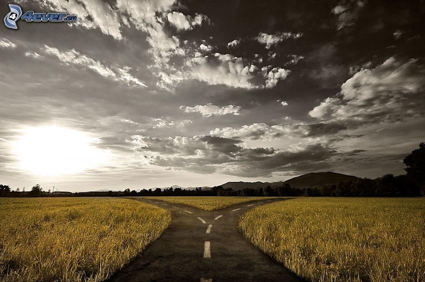 väg, vägkorsning, moln, äng