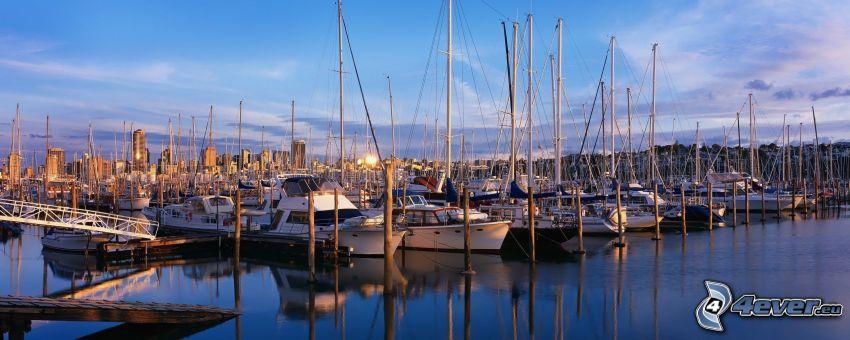 yachthamn