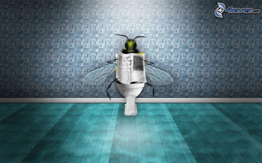 fluga, tidning, toalett