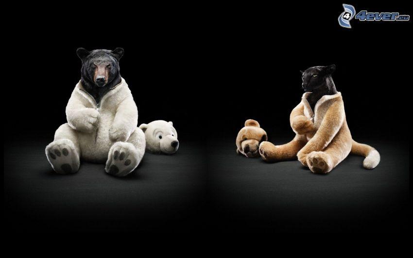 svart björn, puma, kostym