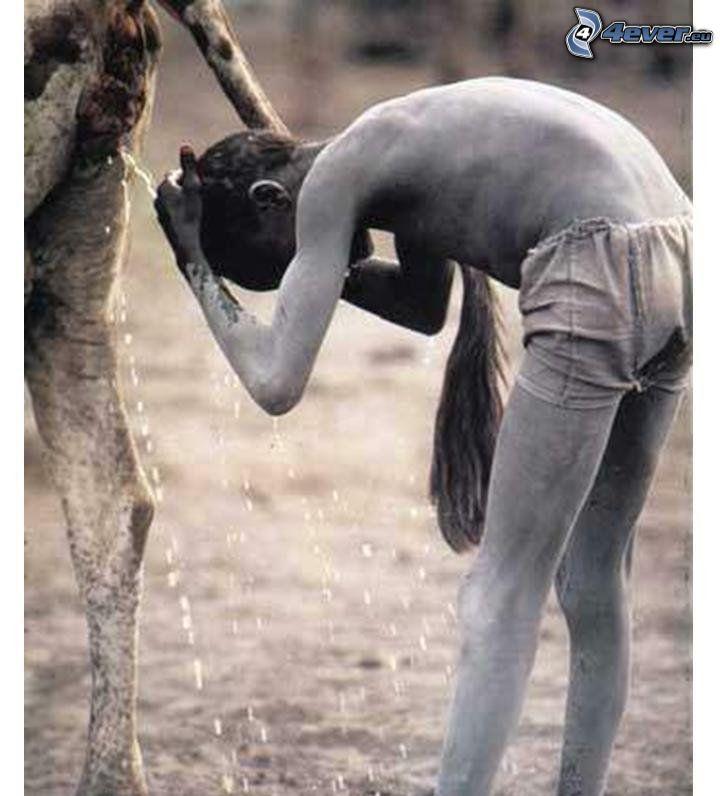 djur, mörkhyad man, Afrika, dusch