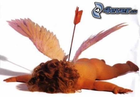 nerskjuten ängel, Amor, pil, vingar