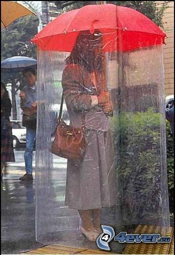 regn, paraply